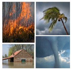 flood watch forest fires civil unrest